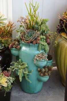 Paint, varnish, add succulents to your strawberry pots….bring inside during the winter for instant color & life! Paint, varnish, add succulents to your strawberry pots….bring inside during the winter for instant color & life! Succulent Gardening, Succulent Pots, Cacti And Succulents, Planting Succulents, Planting Flowers, Organic Gardening, Succulent Care, Succulent Display, Vegetable Gardening