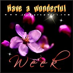 Have a wonderful week 6 - JuJuGraphics Good Week, Good Day, New Week Quotes, Happy New Week, Tags, Feelings, Blog, Movie Posters, Beautiful Images