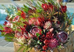 leucodendron inca gold pinterest   All three colorful bouquets together made for an amazing poolside ...