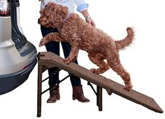 Pet Gear Free-Standing Extra Wide Carpeted Pet Ramp, Chocolate ** Want to know more, click on the image.