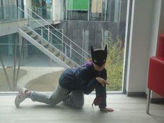 ¡Catwoman en la biblioteca! (Antía)