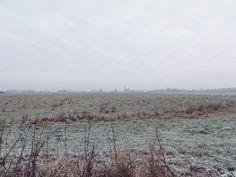 Winter Walk ❄️