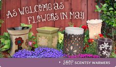 Order your Scentsy today.  You will want more.