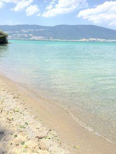 Lac de Neuchâtel, plage d'Yvonand. Une plage belle, sauvage et féerique. On accède aux criques lacustres en marchant à travers les bois, c'est juste magique. Elle n'a pas bougé depuis mon enfance! N.