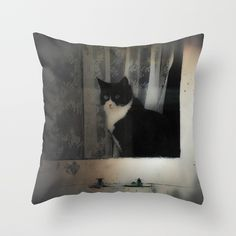 One Cat in the window Throw Pillow by victoriaherrera | Society6