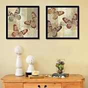 Flight of The Butterfly  Framed Canvas Print ... – AUD $ 82.63