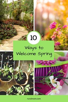 10 Terrific Ways to Welcome Spring Rural Mom Spring Art, Early Spring, Spring Crafts, Growing Flowers, Planting Flowers, Charity Organizations, Welcome Spring, Garden Club, Outdoor Projects