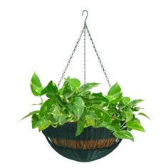 DMC Products Resin Wicker Hanging Basket with Chain Hanger, Hunter Green Hanging Planters, Hanging Baskets, Planter Pots, Hunter Green, Garden Pots, Lawn, Wicker, Hanger, Resin