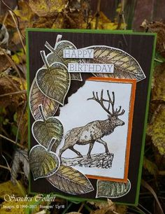 Elegantly lovely nature themed handmade birthday card. #cards #scrapbooking #paper_crafting