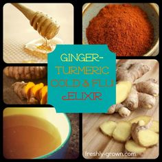 Ginger-Turmeric Cold & Flu Elixir - Freshly GrownFreshly Grown