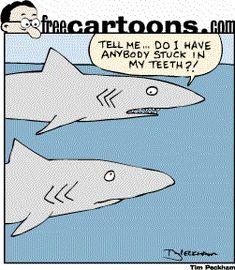 Dental humor - Sharks worry about food stuck in teeth. Dental World, Dental Life, Dentist Humor, Dental Humour, Nurse Humor, Dentistry For Kids, Dental Quotes, Dental Assistant, Dental Hygienist