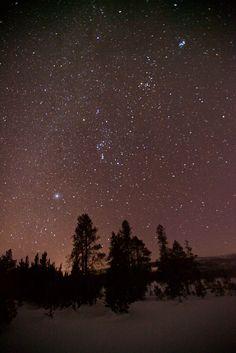 Stars shine above Upper Geyser Basin in Yellowstone National Park.