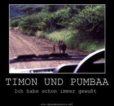 haha Timon and Pumba Hakuna Matata, I Smile, Make You Smile, Disney Pixar, Disney Facts, Haha Funny, Funny Memes, Funny Stuff, Awesome Stuff