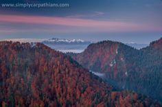 Tatra Mountains seen from Pieniny Mountains.
