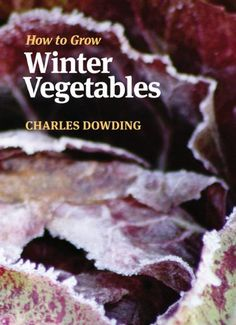 How to Grow Winter Vegetables: Amazon.co.uk: Charles Dowding: 9781900322881: Books