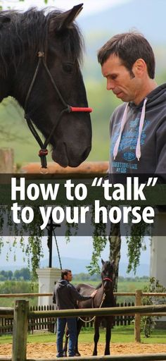 how to talk to a horse
