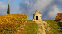 Couleurs d'automne en vallée du Lot https://photos.thierry-dollon.net?utm_content=buffer48c67&utm_medium=social&utm_source=pinterest.com&utm_campaign=buffer #followme #thierrydollon #photodujour #lot #sudouest #cahors #valleedulot