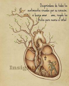 〽️ Desprendase de todos sentimientos creados por su corazón, si busca amor...ame, regale los frutos pero nunca el árbol