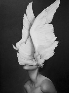 by Amy Judd- fragments of birds- hope, prey, beauty, on a human face to protest the beauty in wings and hidden behind them.
