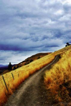 Missoula, Montana.  Silentsymphonies.com