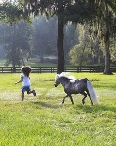 Pony following after her buddy