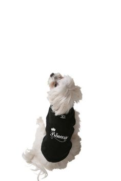 Doggie Tank Top, Princess, Black, Extra-Small Ruff Ruff a... https://www.amazon.com/dp/B003Y3BOTQ/ref=cm_sw_r_pi_dp_x_GJVNzbGVBTJ7J