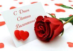 griphon: С Днём Святого Валентина