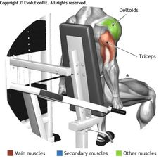 Chest triceps and shoulder: Plate press X 20 (quickly ...