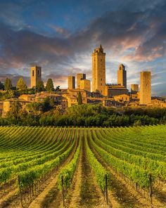 PEOPLE-PLACES-THINGS-ETC — colorel11:   San Gimignano-Tuscany