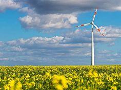 Wirtschaft: Stuttgart: Grün-Schwarz im Land will die Windenergie ausbauen - badische-zeitung.de