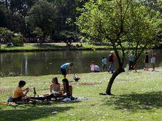 """3. PARQUE IBIRAPUERA, SAO PAULO, BRASIL.  Se extiende en un área de 1.6 kilómetros cuadrados y sus lagos, interconectados, ocupan una superficie de 157 mil metros cuadrados. [Tomado de """"los 10 parques más bellos del mundo""""]"""