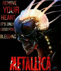 Metallica Album Covers, Metallica Albums, James Hetfield, Happy Reading, Punk Art, Heavy Metal, Bands, Movie Posters, Skull