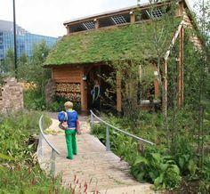 Zelf een groen dak aanleggen