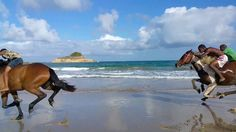 Horseback Riding in St.Lucia with Atlantic Shores Riding Stables - Sweet St.lucia - Vacation Videos Resort and Hotel Information