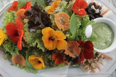 ★ Salad Platter made of 6 to 8 lettuce varieties served with carrots, turnips, walnuts, raisins and a caesar-type dressing made from organic flax oil, olive oil and sunflower oil prepared with seven fresh garden herbs.    The centerpiece of the set meal is an abundant serving of organic vegetables with edible flowers and their signature dressing. It was really a lot--you can get full by finishing all of it. I must admit it was a challenge to eat the flowers. (via Eve's Garden)