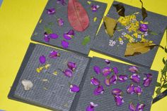 sticky pad nature collage -- Irresistible Ideas for Play Based Learning