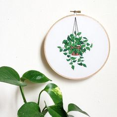 Sarah K Benning Hanging House Plant Modern Hoop Art - Hand Embroidery - Contemporary Home Decor Hand Embroidery Stitches, Embroidery Hoop Art, Hand Embroidery Designs, Cross Stitch Embroidery, Machine Embroidery, Embroidery Patches, Embroidery Ideas, Ribbon Embroidery, Contemporary Embroidery