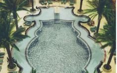 The pool at Miami's Raleigh Hotel is a reflection of the curvaceous and modern styling of the hotel's architecture.