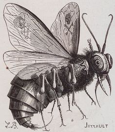 Belzebub: according to the scriptures: the prince of demons, the first in power and crimes after Satan....his name means Lord of Flies.