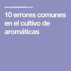 10 errores comunes en el cultivo de aromáticas
