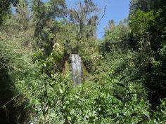 Cachoeira dos Coqueiros