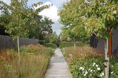 Zomerbeeld | ontworpen door GRASVELD Tuin- en Landschapsarchitecten Sidewalk, Design, Side Walkway, Walkway, Walkways, Pavement