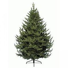 Kaemingk Everlands Grove Mountain Christmas Xmas Tree - 7ft