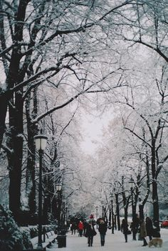 brutalgeneration:  Winter nostalgia (by jennifée)