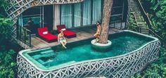 31 magnifiques piscines à voir dans le monde Service Public, Picnic, Cactus, Basket, Outdoor, Piscine Hors Sol, The Float, Tropical Forest, Garden Projects