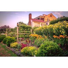 May your weekend be full of love and joy! #mossmountainfarm #sharethebounty #joy #gratitude #happiness #liveabetterlife #naturerestoresus #naturalbeauty #flowerpower #organicallygrown #gardenhome #growwithus