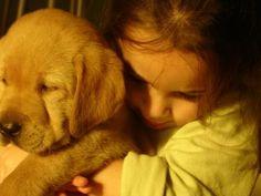 Qué es la Zooterapia o Terapia Asistida con Animales http://www.mascotadomestica.com/articulos-sobre-mascotas/que-es-la-zooterapia.html
