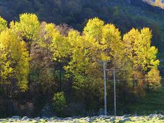 IMG_1147 | Flickr - Photo Sharing!