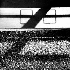 Belli i tuoi occhiali  #face #blackandwhite #bnw #monochrome #instablackandwhite #monoart #insta_bw #bnw_society #bw_lover #bw_photooftheday #photooftheday #bw #instagood #bw_society #bw_crew #bwwednesday #insta_pick_bw #bwstyles_gf #irox_bw #igersbnw #bwstyleoftheday #monotone #monochromatic#noir #fineart_photobw