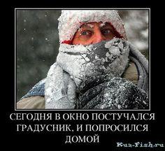 Юмор в картинках — Рыбалка в Кемеровской области — Страница №42
